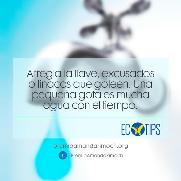 ar-ecotips1